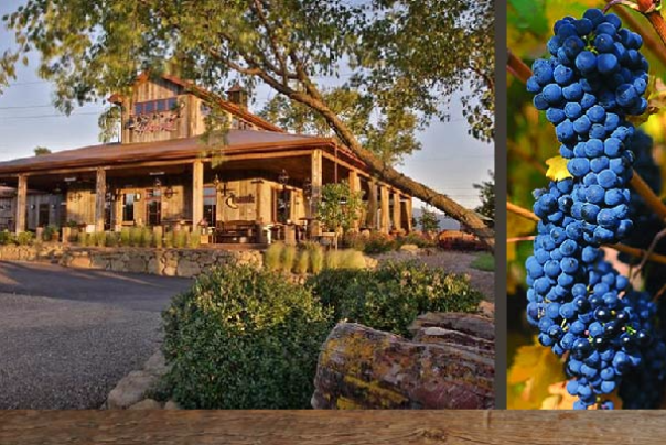Wine Tasting Tours Medford Oregon