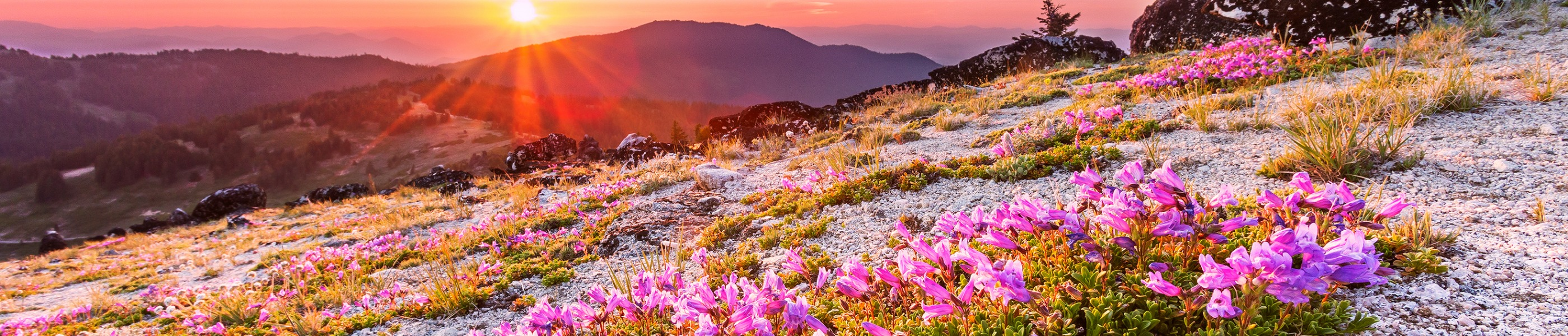 A magnificent sunrise over Mt. Ashland