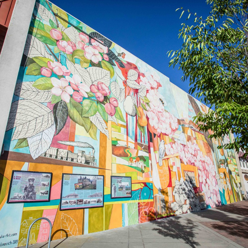A colorful mural in Downtown Medford