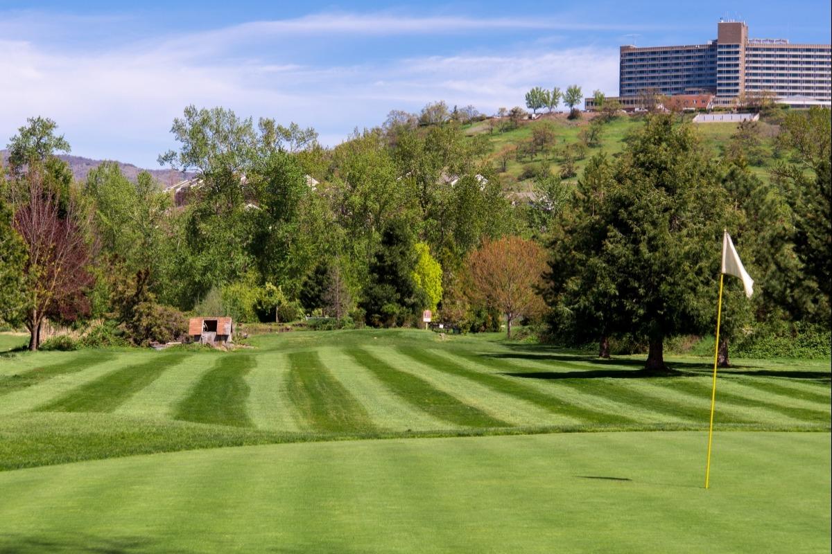 Golf course in Southern Oregon, golfing, golf, putting, golfing in Medford, Bear Creek Golf Course