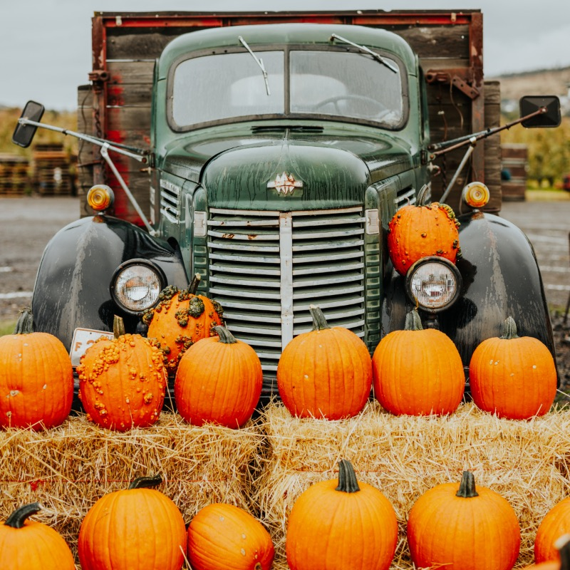 Rogue Valley Harvest Festivals