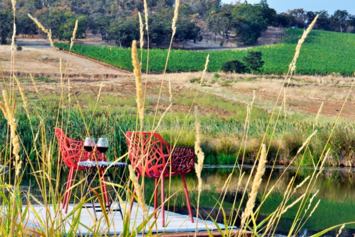vineyard, winery, wine, two chairs, couples,