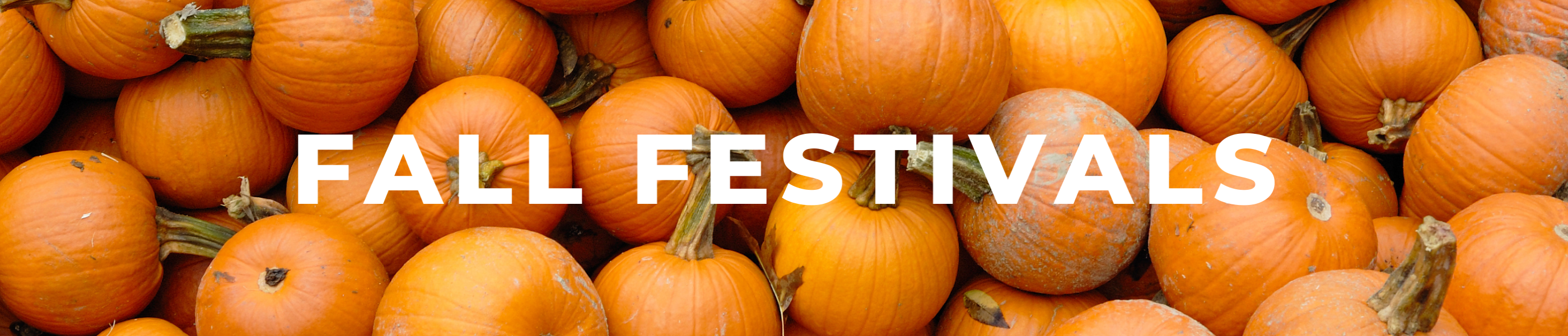 Fall festivities, things to do in medford