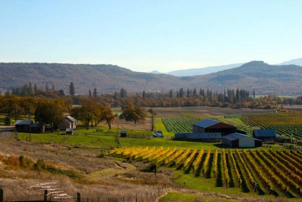 cliff creek vineyard with barn and vineyard