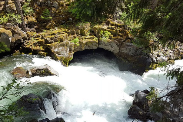 Powerful white water at the Natural Bridge Loop