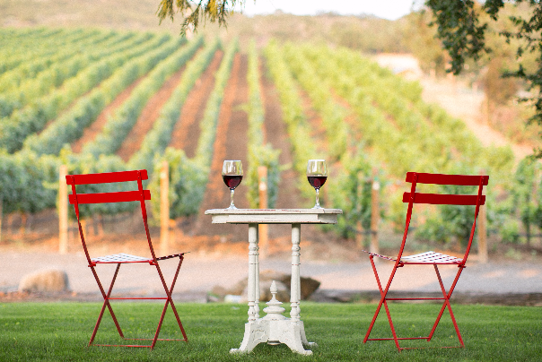 A Southern Oregon vineyards